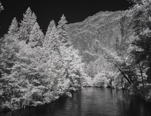 Tenaya Creek, Yosemite National Park