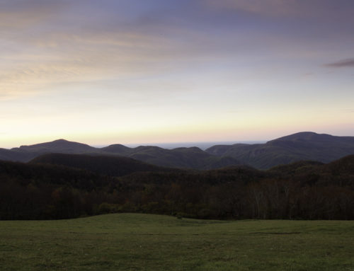 Sunrise sans cows – Little Pisgah