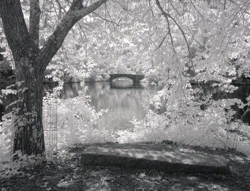 Biltmore Bass Pond Bridge