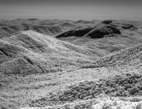 Cradle of Forestry Overlook – Blue Ridge Parkway
