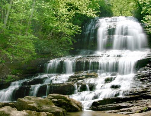 Pearson's Falls – Saluda, NC