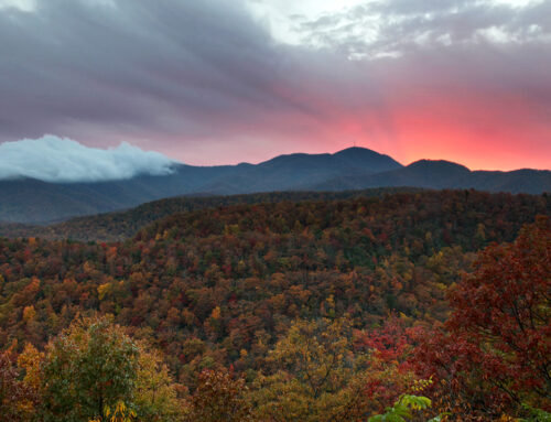 Bad Fork Valley Overlook – October 18th, 2012